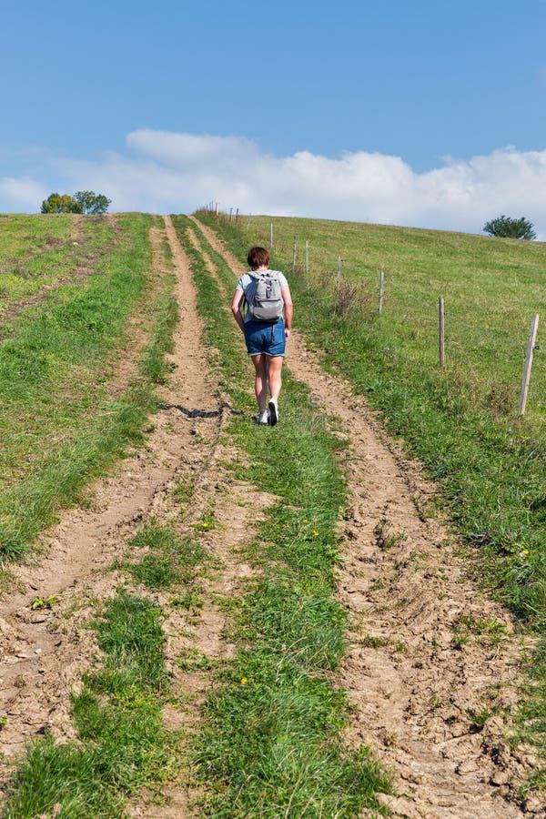 Mujer que camina en la colina del verano cerca de Liptovsky Trnovec, Eslovaquia imagen de archivo libre de regalías