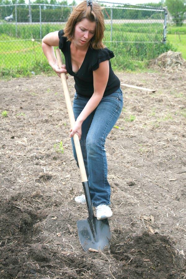 Mujer que cava la tierra imagen de archivo
