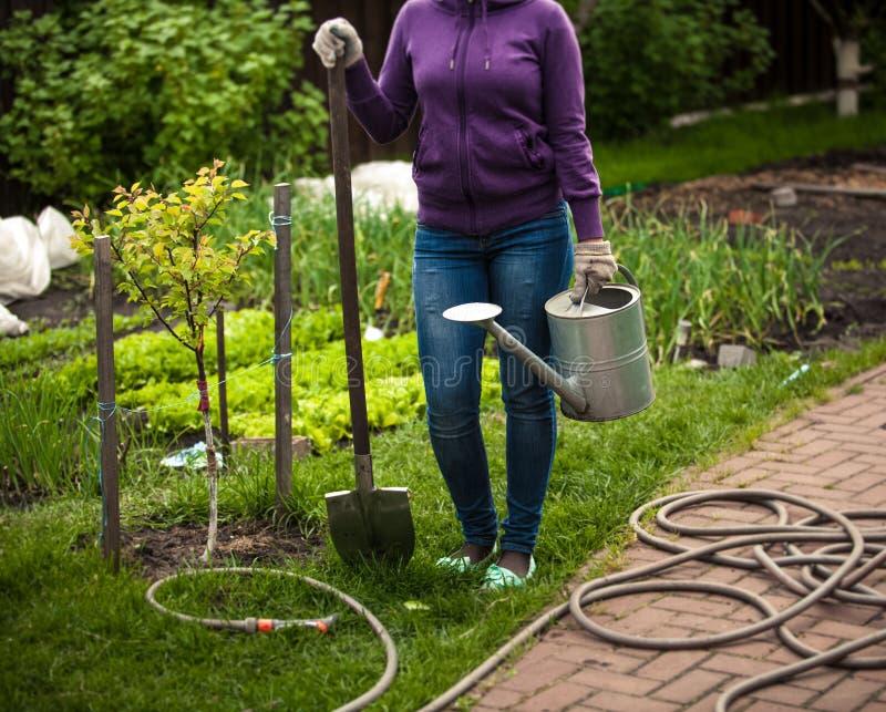 Mujer que celebra la pala y la regadera en el jardín imagen de archivo