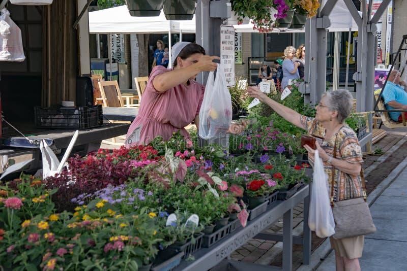 Mujer que compra las flores de la primavera imagenes de archivo