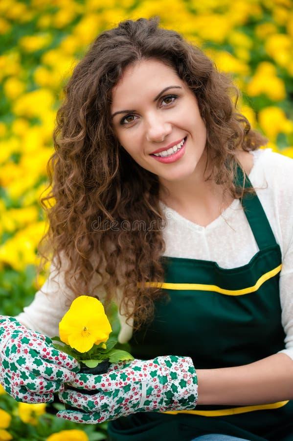 Mujer que cuida un jardín de flores fotos de archivo libres de regalías