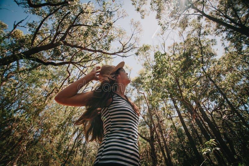 Mujer que disfruta de la naturaleza en el bosque australiano fotos de archivo