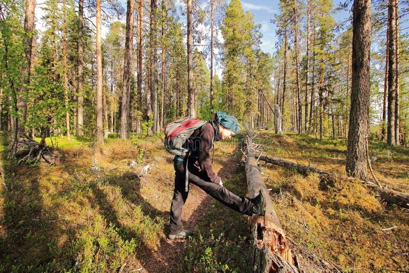 Mujer que estira en bosque imagenes de archivo