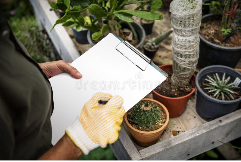 Mujer que hace un inventario en una tienda del jardín imagen de archivo libre de regalías
