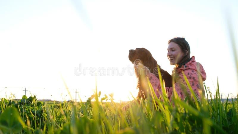 Mujer que juega con el perro en la puesta del sol, chica joven con el animal doméstico que se sienta en hierba y que se relaja en foto de archivo libre de regalías