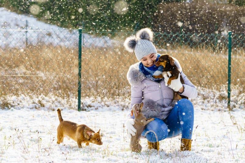 Mujer que juega con los perros durante invierno imágenes de archivo libres de regalías