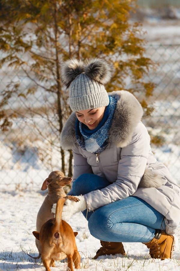 Mujer que juega con los perros durante invierno foto de archivo