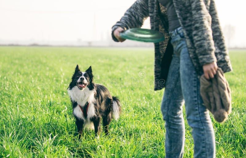 Mujer que juega con su perro del border collie foto de archivo libre de regalías