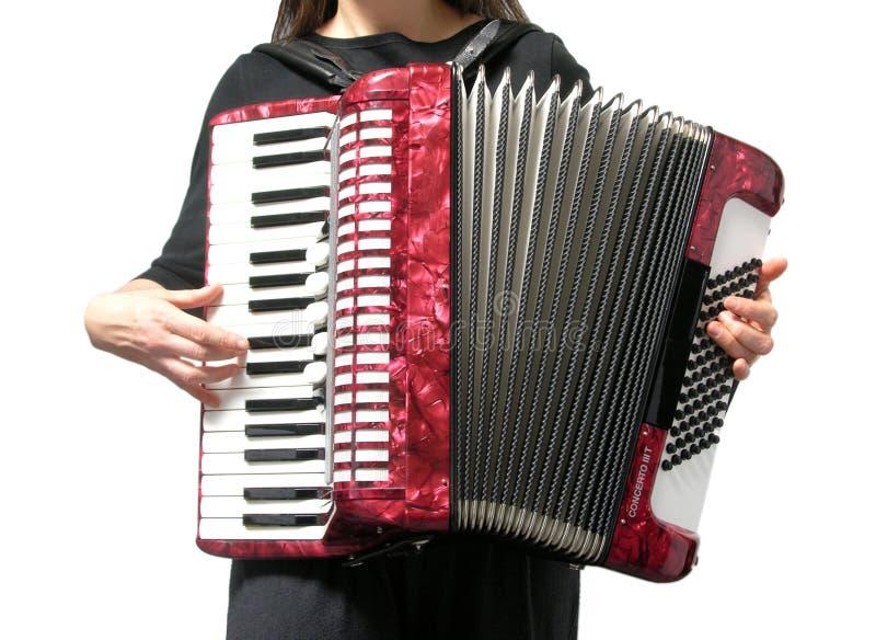 Mujer que juega el acordión en blanco imagenes de archivo