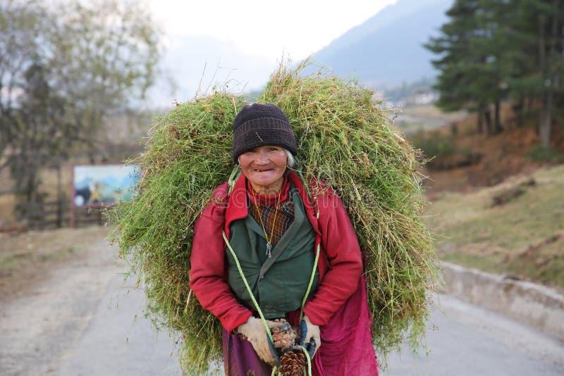 Mujer que lleva la carga pesada del grano, Bhután imagen de archivo
