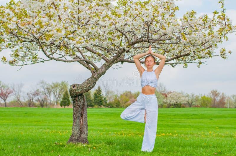 Mujer que medita en actitud del árbol del vrksasana de la yoga en el parque fotografía de archivo libre de regalías