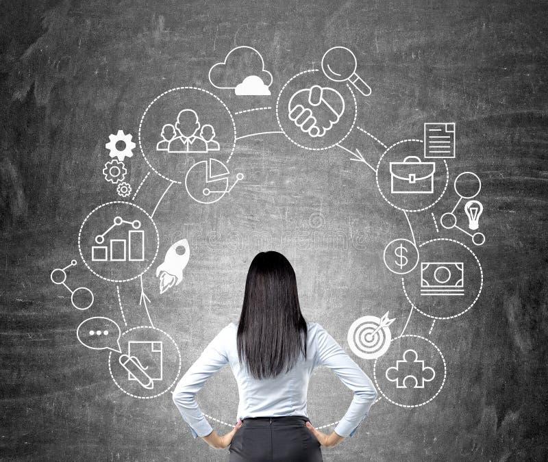 Mujer que mira el ciclo de negocio ilustración del vector