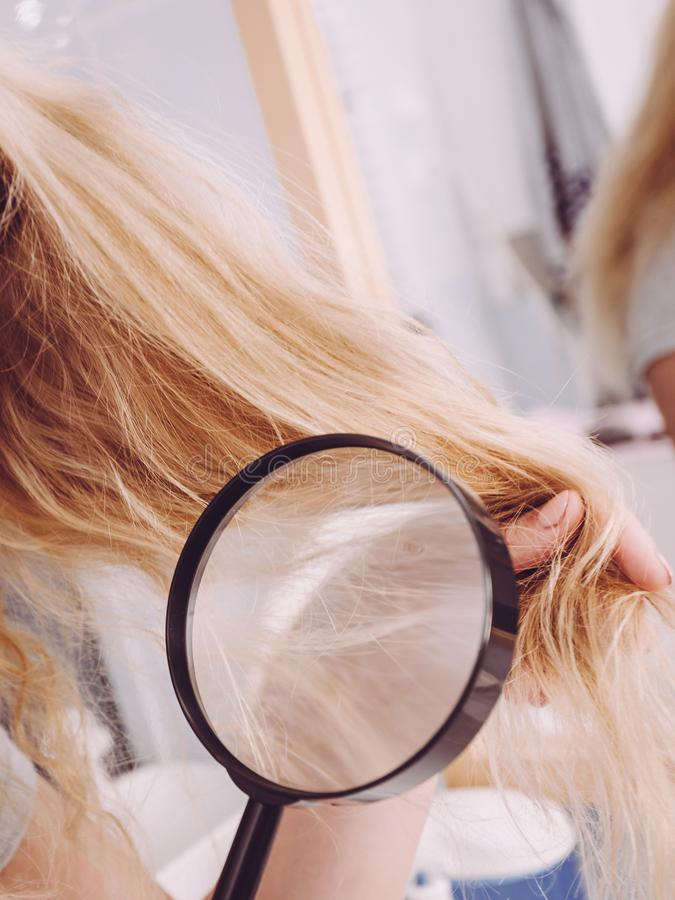 Mujer que mira extremos del pelo a trav?s de la lupa imagen de archivo libre de regalías