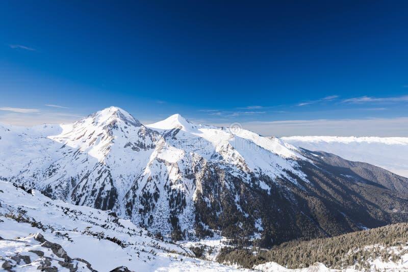 Mujer que mira las montañas nevadas fotografía de archivo