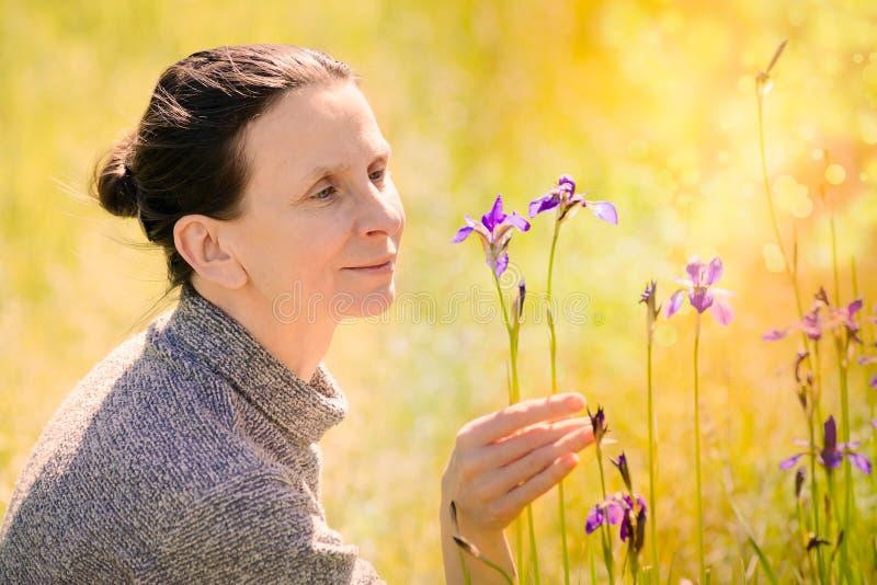 Mujer que mira una flor salvaje del sibirica del iris imagenes de archivo