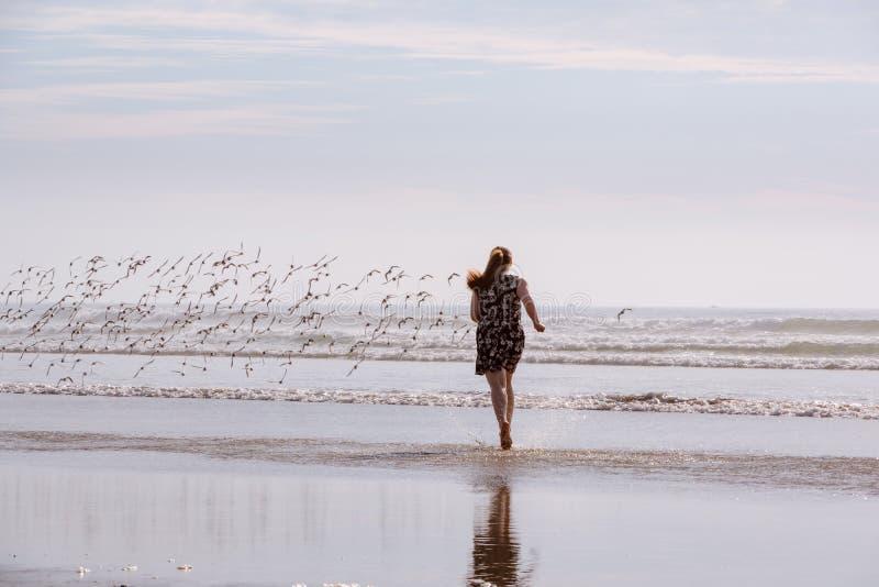 Mujer que persigue pájaros en la playa imagen de archivo