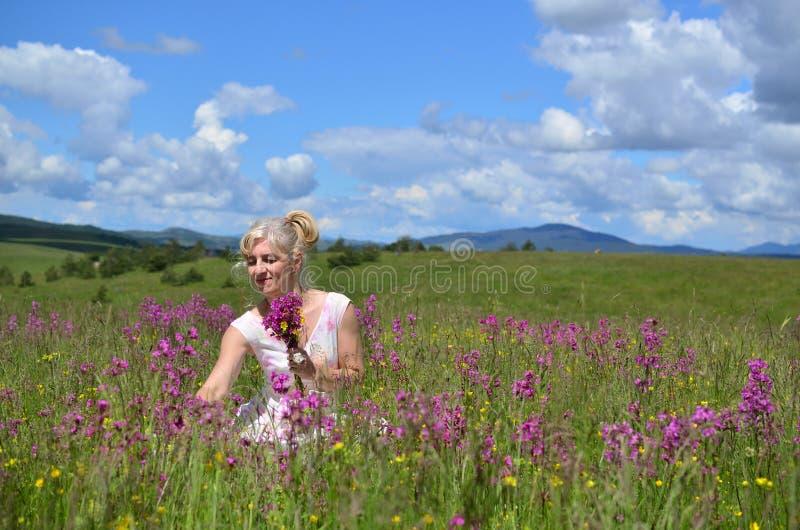 Mujer que recolecta las flores en prado del verano fotografía de archivo