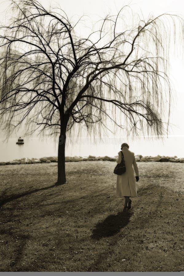 Mujer que recorre cerca de árbol fotos de archivo