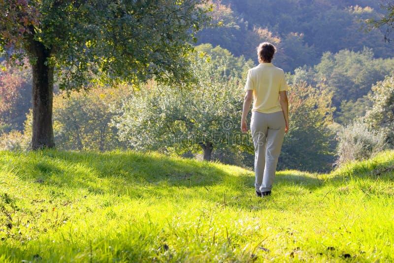 Mujer que recorre en un paisaje del otoño fotografía de archivo libre de regalías
