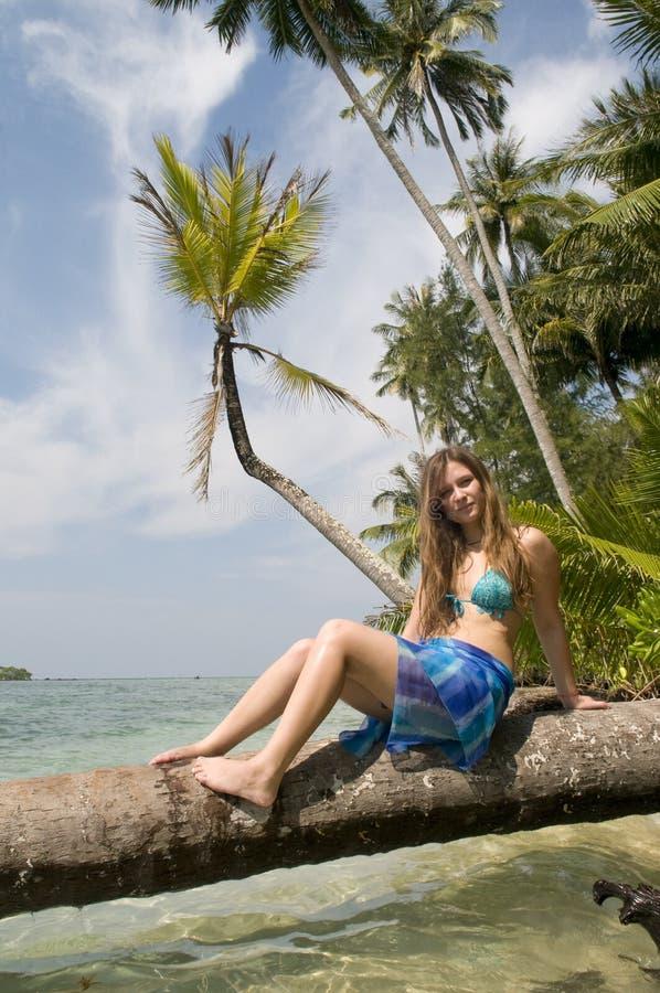 Mujer que se sienta en la palmera imagen de archivo libre de regalías