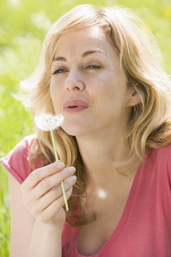 Mujer que sienta la pista del diente de león al aire libre que sopla foto de archivo