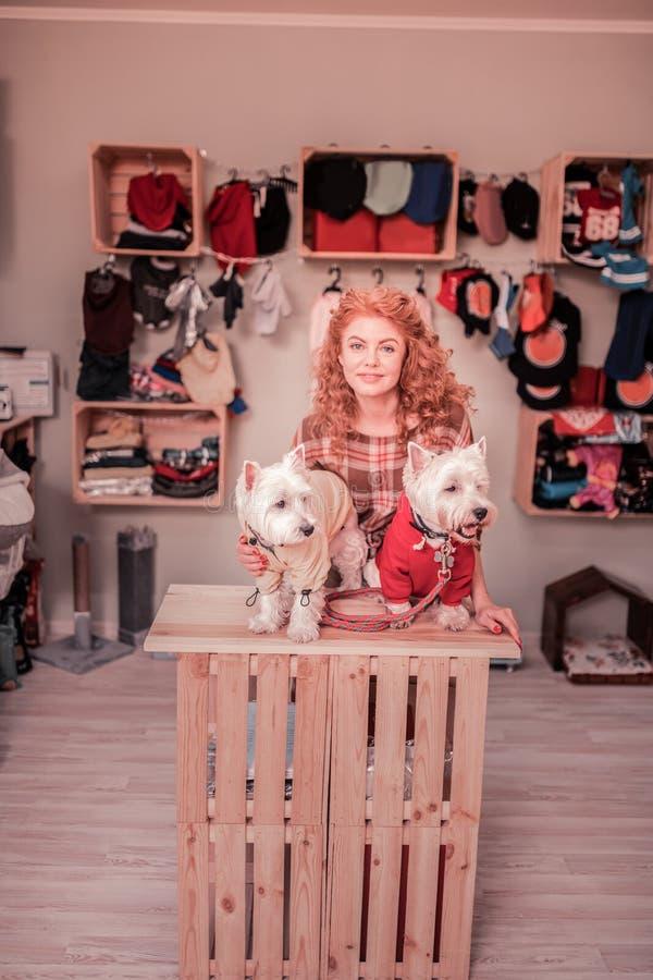 Mujer que sonríe sus perros blancos lindos en ropa foto de archivo