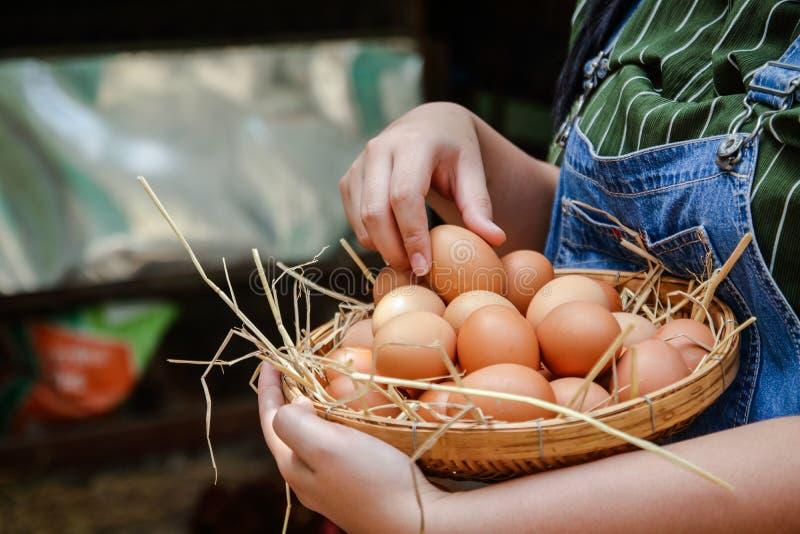 Mujer que sostiene una cesta de madera con los huevos marrones fotografía de archivo