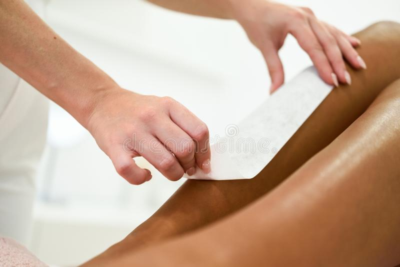 Mujer que tiene procedimiento de retiro del pelo en la pierna que aplica la tira de la cera fotografía de archivo