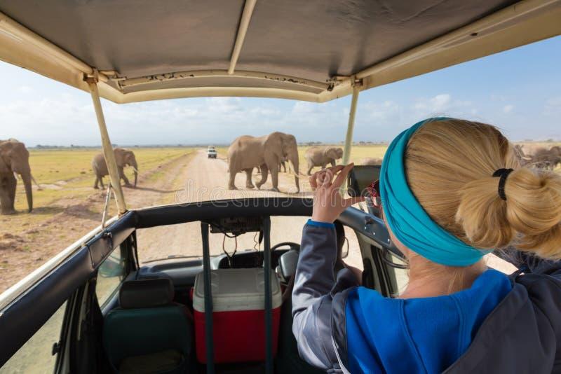 Mujer que toma las fotos en safari africano de la fauna Amboseli, Kenia imagenes de archivo