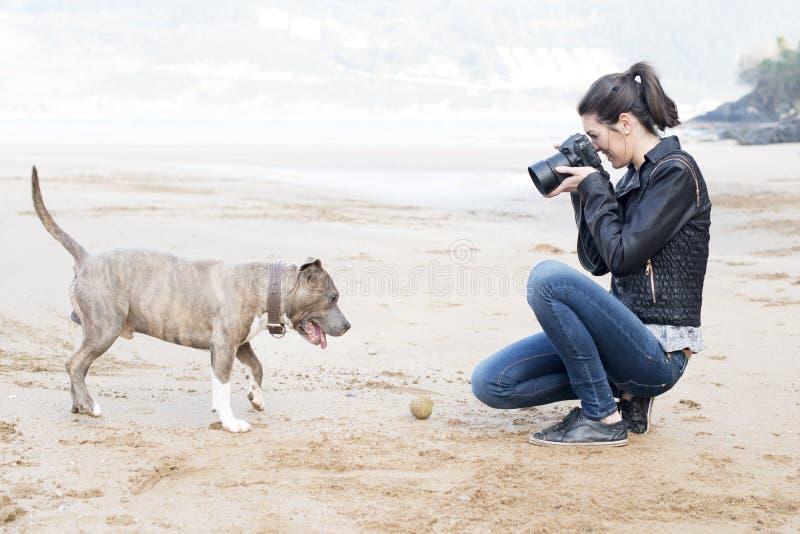 Mujer que toma las imágenes de su perro, al aire libre. imagen de archivo