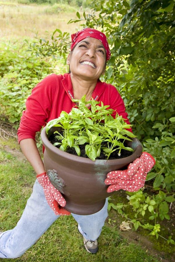 Mujer que trabaja afuera en jardín imágenes de archivo libres de regalías