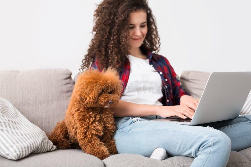 Mujer que trabaja en casa con el perro lindo imagenes de archivo