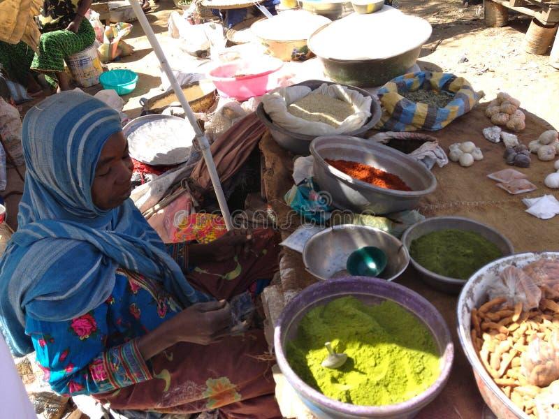 Mujer que vende las especias en un mercado local en Farcha, N'Djamena, República eo Tchad imagenes de archivo