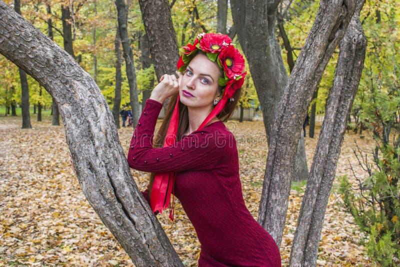 Mujer romántica del otoño con una guirnalda en su pelo foto de archivo libre de regalías