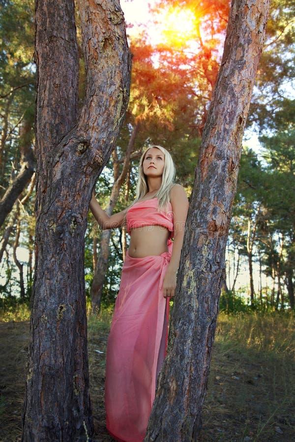 Mujer romántica hermosa en el bosque de hadas imagenes de archivo