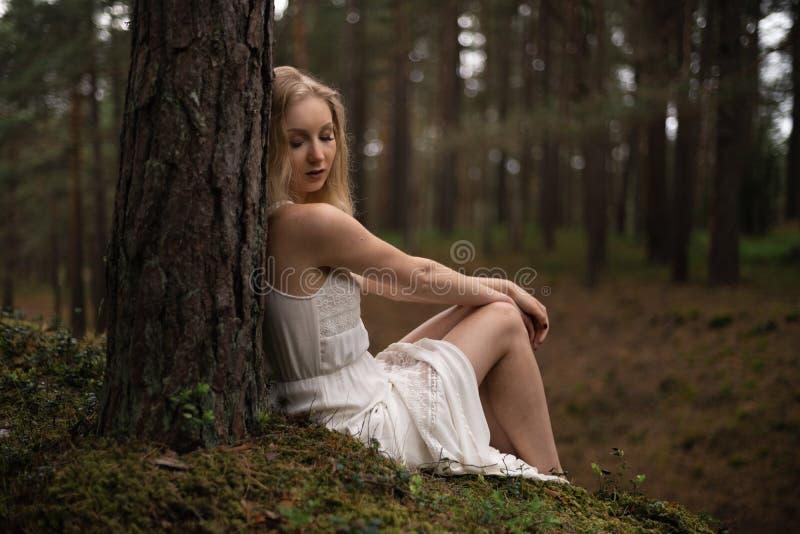 Mujer rubia joven hermosa que se sienta en ninfa del bosque en el vestido blanco en madera imperecedera imágenes de archivo libres de regalías