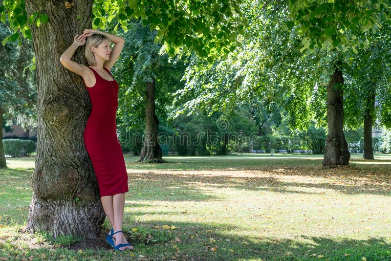 Mujer rubia que abraza un árbol en parque Chica joven en un vestido rojo que descansa en la naturaleza, inclinada contra un árbol fotos de archivo libres de regalías