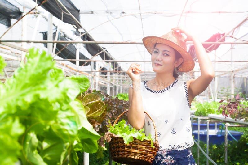 Mujer sana con las verduras de ensalada en cesta en granja del hidrocultivo Belleza y salud fotografía de archivo libre de regalías