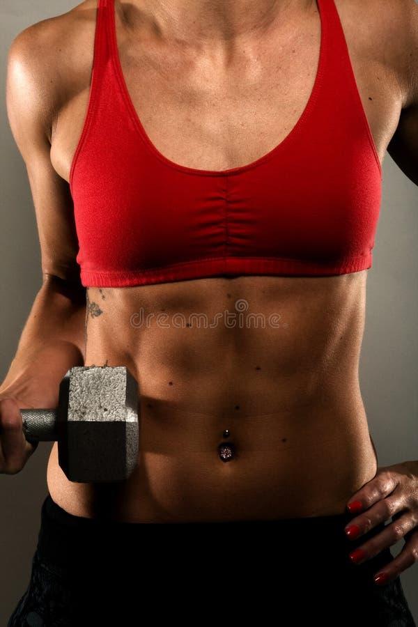 Mujer sana de la aptitud que muestra sus músculos fotos de archivo libres de regalías