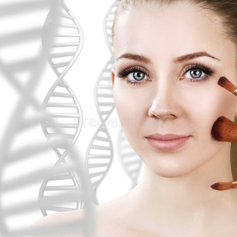 Mujer sensual con los cepillos del maquillaje entre cadenas de la DNA imagen de archivo
