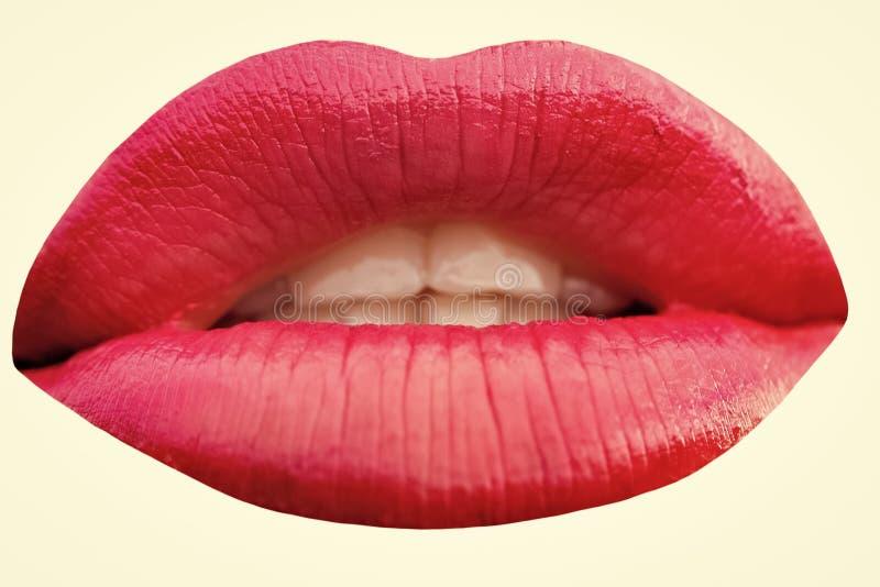 Mujer sensual Foto del primer de labios rojos foto de archivo libre de regalías