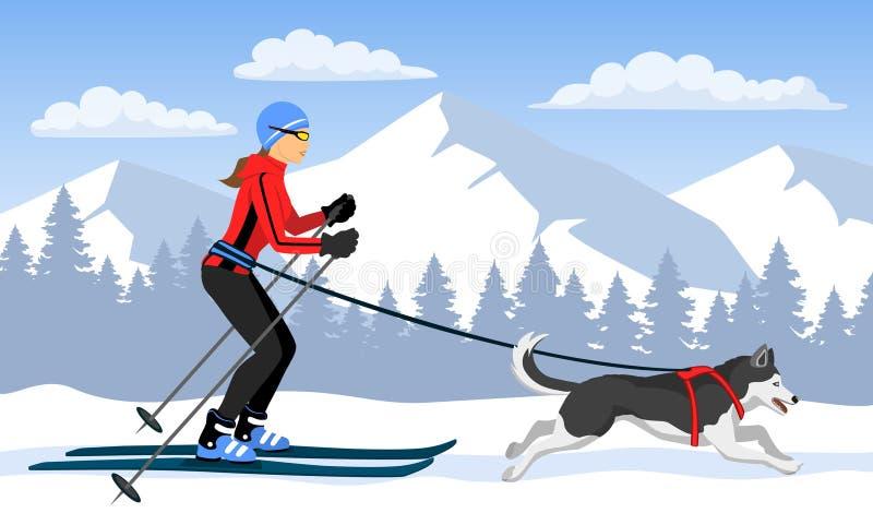 Mujer skijoring con su perro Landsccape de la montaña del invierno stock de ilustración