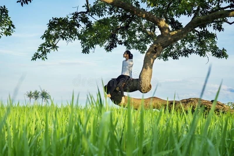 Mujer sola que se sienta en un árbol fotografía de archivo