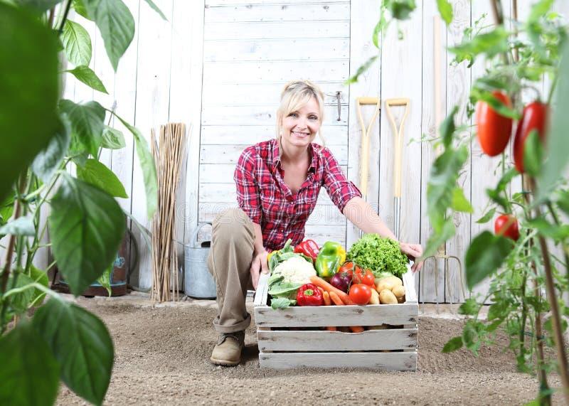Mujer sonriente en huerto con la caja de madera por completo de verduras en el fondo blanco de la pared con las herramientas fotos de archivo
