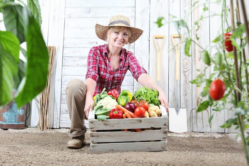 Mujer sonriente en huerto con la caja de madera por completo de verduras en el fondo blanco de la pared con las herramientas imagenes de archivo