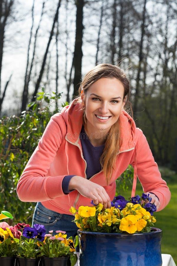 Download Mujer Sonriente Que Planta Las Flores Del Pensamiento Foto de archivo - Imagen de flores, gardening: 41915738