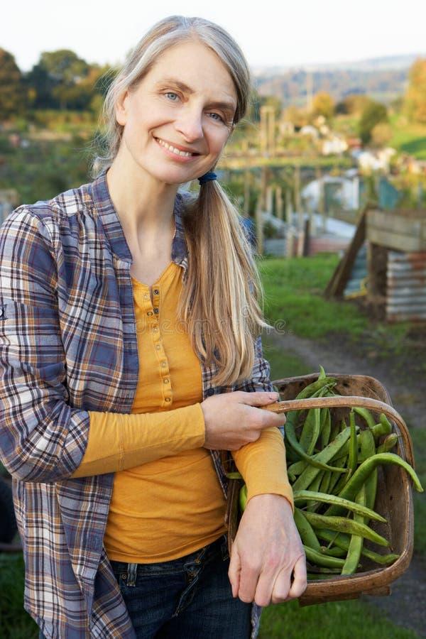Mujer sonriente que trabaja en la asignación imagen de archivo