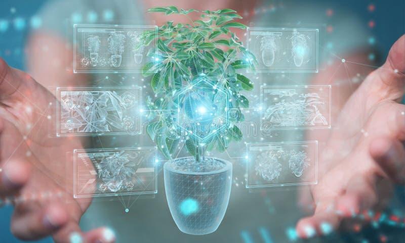 Mujer sosteniendo y tocando la proyección holográfica de una planta con análisis digital 3D representación imagen de archivo libre de regalías