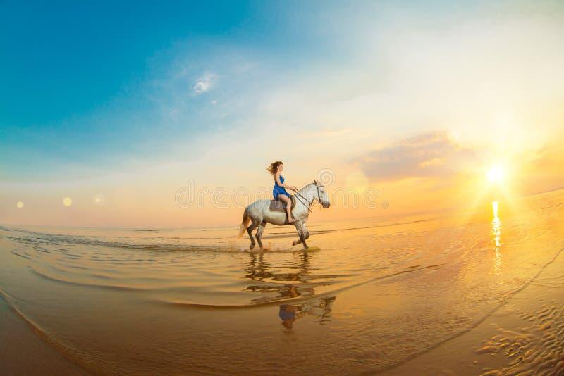 Mujer y caballo en el fondo del cielo y del agua Muchacha o modelo imágenes de archivo libres de regalías