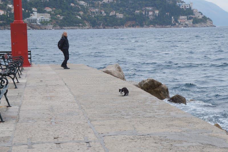 Mujer y gato callejero maduros foto de archivo